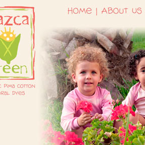 Nazca Green Website